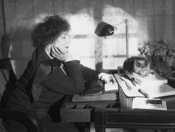 Colette et son chat