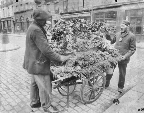 Fleuriste d'Eugène Atget